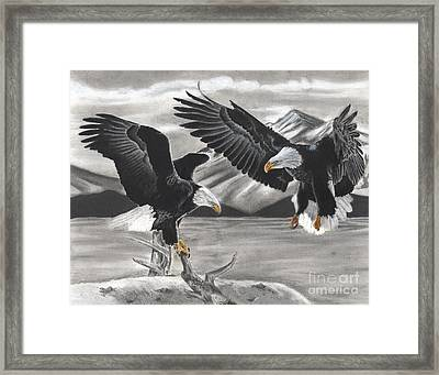 Eagles Framed Print