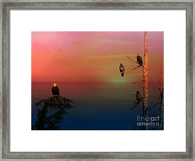 Eagle's View Framed Print