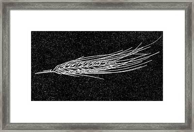 Ear Of Barley, Woodcut Framed Print