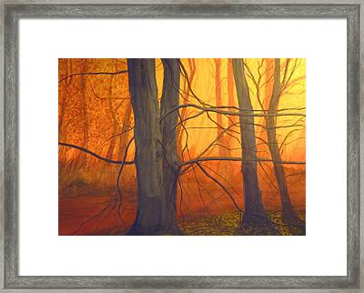 Early Dawn Framed Print by Robert Duvall