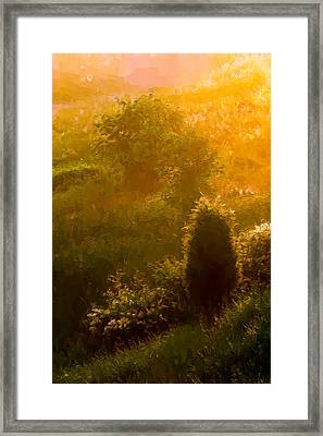 Early Gloaming Framed Print by Ron Jones