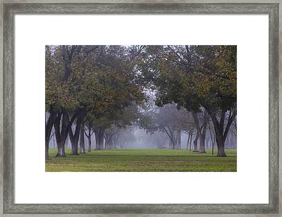 Early Hours Of Alabama Framed Print by Nicholas Evans