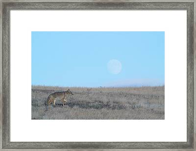 Early Hunt Framed Print