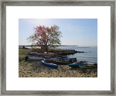 Early Morning Canoes Framed Print by Valia Bradshaw