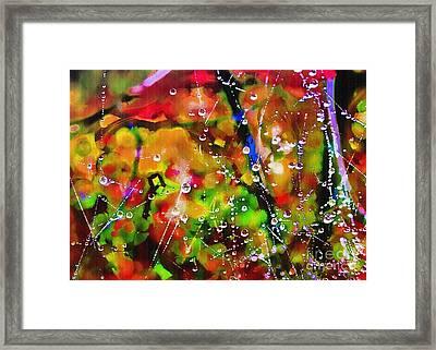 Early Morning Dew Framed Print by Judi Bagwell