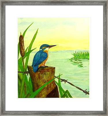 Early Morning Fisher Framed Print by Peter Edward Green