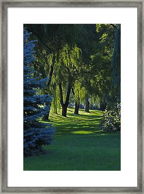 Framed Print featuring the photograph Early Morning by John Stuart Webbstock