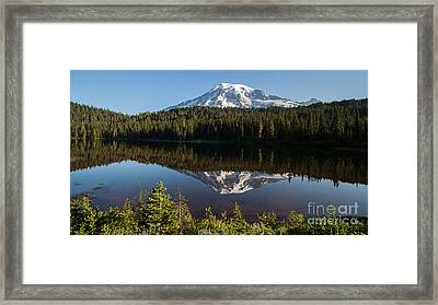 Early Morning Majestic Framed Print by Mike Reid