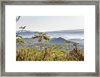 Early Morning Mists Framed Print