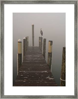 Early Morning On The Dock Framed Print