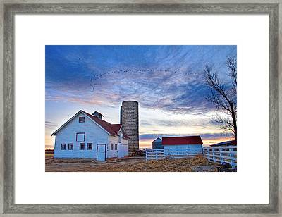 Early Morning On The Farm Framed Print by James BO  Insogna