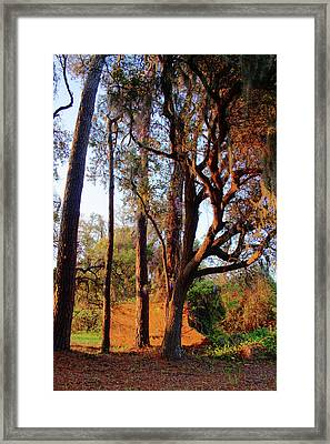 Early Morning On The Highway Framed Print