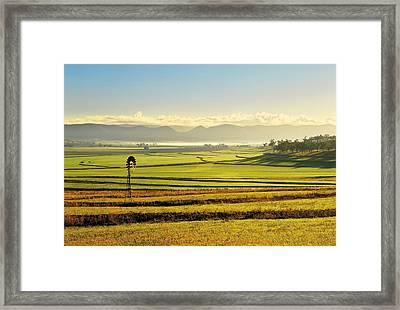 Early Morning Pastoral Scene With Keyline Plowing Near Warwick, Queensland, Australia Framed Print by Peter Walton Photography