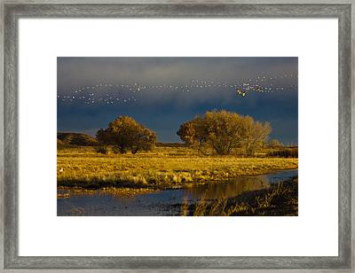 Early Morning Take Off Framed Print