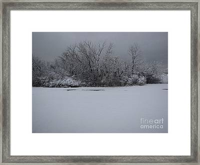 Early Spring Snow Fall Framed Print by Cedric Hampton