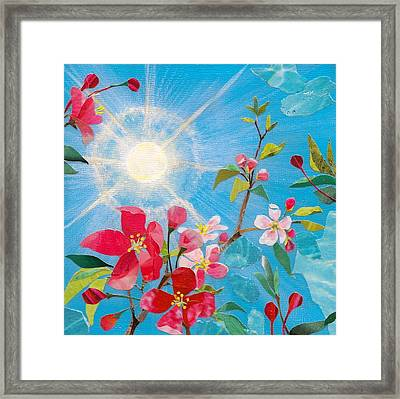 Early Spring Sunshine Framed Print
