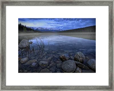 Early Summer Morning On Patricia Lake Framed Print by Dan Jurak