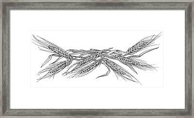 Ears Of Barley, Woodcut Framed Print