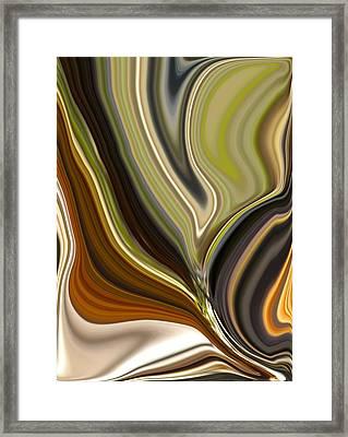 Earth Tones Framed Print