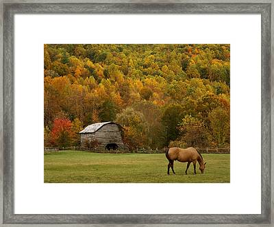 Ease Into Autumn Framed Print by J K York