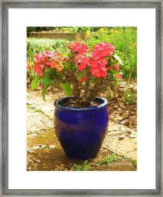 Easter Cactus Framed Print