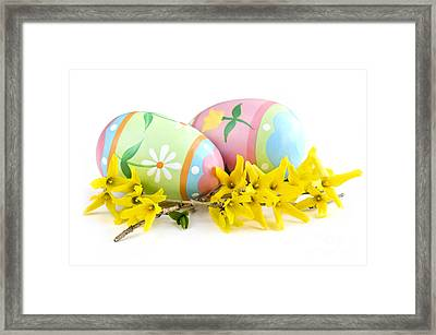 Easter Eggs Framed Print by Elena Elisseeva