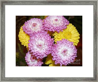 Easter Flowers Framed Print