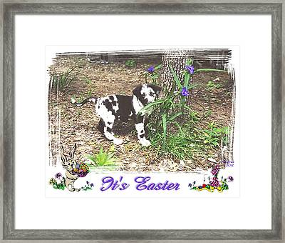Easter Framed Print by Poni Trax