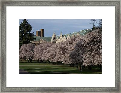 Easter Sunday Framed Print by Jerry Cahill