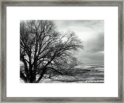 Framed Print featuring the photograph Eastern Plains Of Colorado by Clarice  Lakota