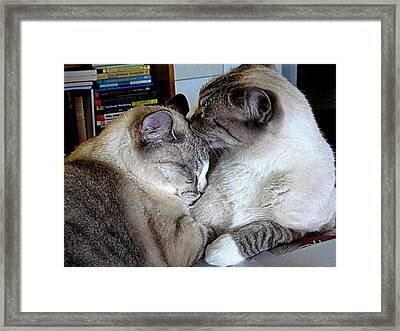 Framed Print featuring the photograph Easy Like Sunday by Lou Belcher