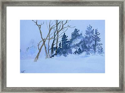 Echoes Of Ansel Framed Print by Warren Thompson