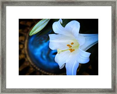 Framed Print featuring the photograph Eclipse With A Lily by Steven Sparks