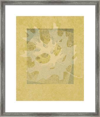 Ecru Leaf Framed Print by Ann Powell
