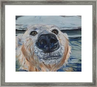 Ed As A Polar Bear Framed Print