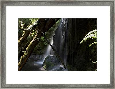 Eden On Orcas Framed Print