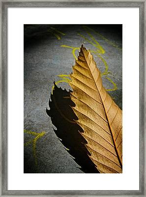 Edge Of Summer Framed Print