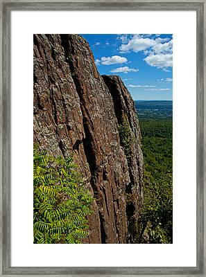 Edge Of The Mountain Framed Print by Karol Livote