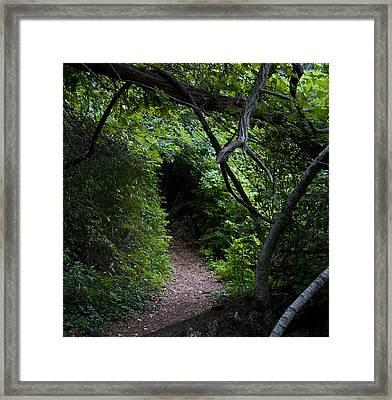 Edge Of The Shire Framed Print