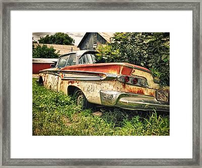 Edsel In The Weeds Framed Print by Jon Herrera
