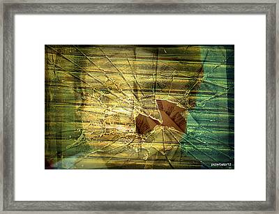 Education For Few Framed Print by Paulo Zerbato