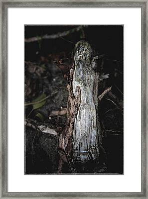 Effigy Framed Print by Odd Jeppesen