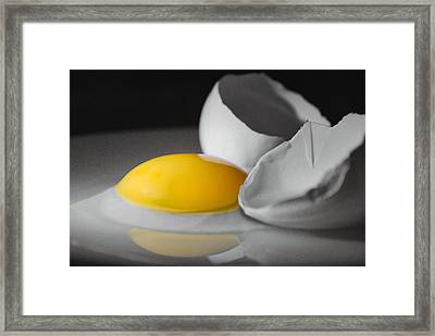 Egg And Black And White Framed Print