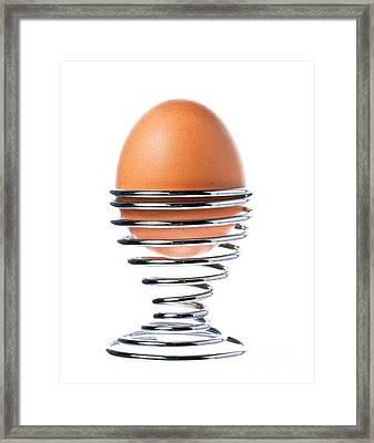 Egg Framed Print by Johan Larson