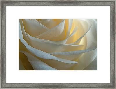 Egg White Framed Print