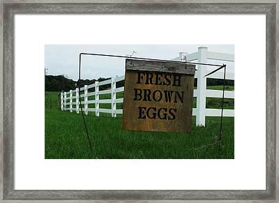 Eggs For Sale Framed Print
