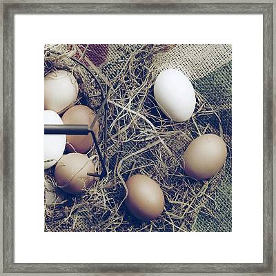 Eggs Framed Print by Joana Kruse