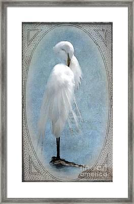 Egret In A Vintage Frame Framed Print by Betty LaRue