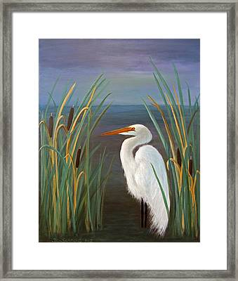 Egret In Cattails Framed Print