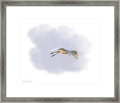 Egret Morning Fly Framed Print by J Larry Walker